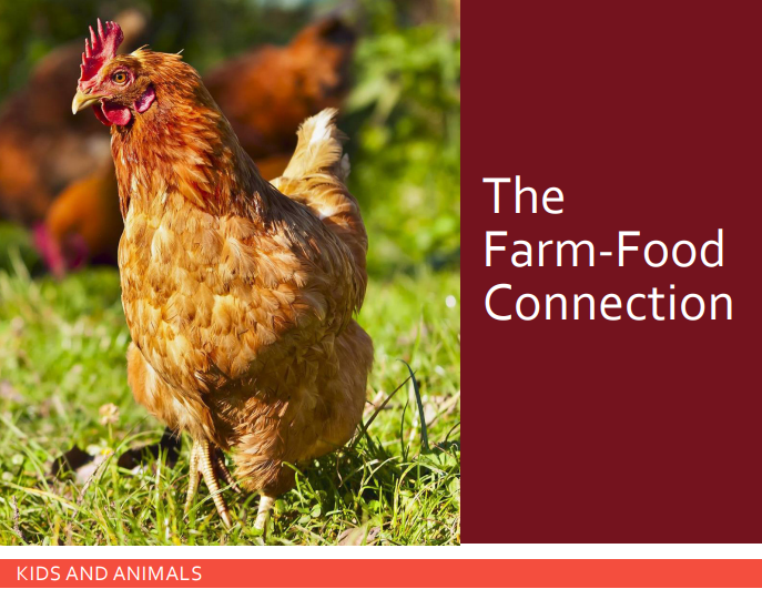 2019-06-10 15_05_27-The Farm Food Connection (1) (1).pdf.png