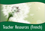 SBTN-teacherresourcesfrench.png